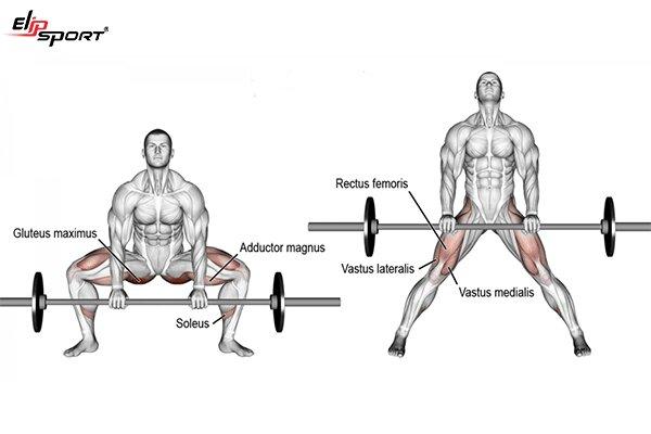 các bài tập fitness cho nam