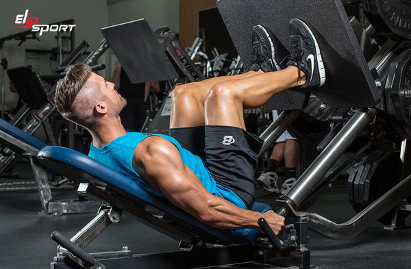 Các bài tập gym cơ bản cho nam mới tập