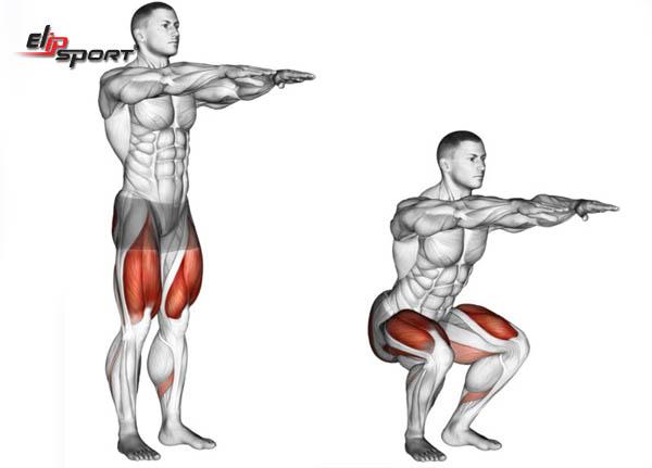 bài tập squat nam