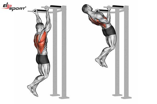 lịch tập gym nam tăng cơ giảm mỡ