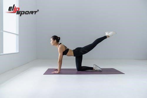 tập yoga giảm mỡ bụng tại nhà
