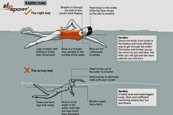 bơi sải có bị to vai