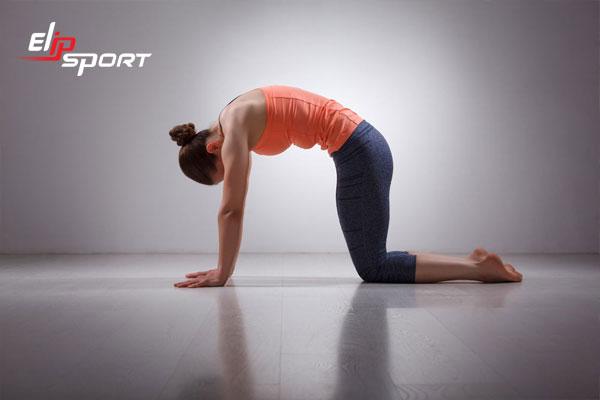 tập yoga có tốt cho xương khớp