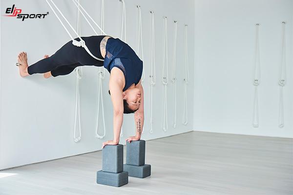 Hatha yoga la gi