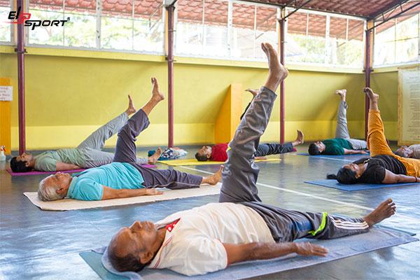 sivananda yoga là gì