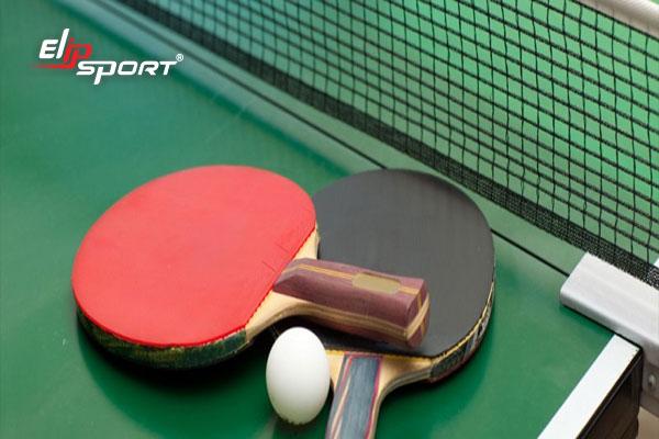 cửa hàng bán vợt bóng bàn tphcm