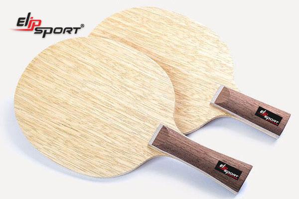 mua vợt bóng bàn ở đâu tphcm