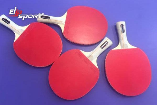 vợt bóng bàn tphcm