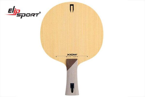 cốt vợt bóng bàn tốt nhất hiện nay