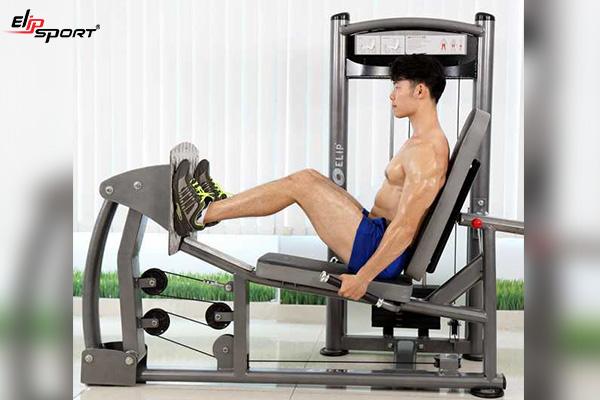 thiết bị gym Hồ Chí Minh