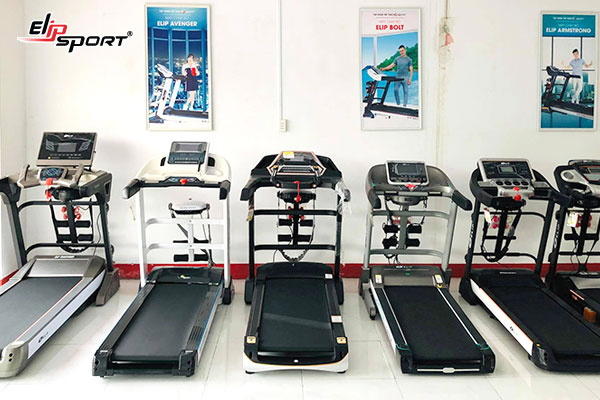 elipsport bắc giang