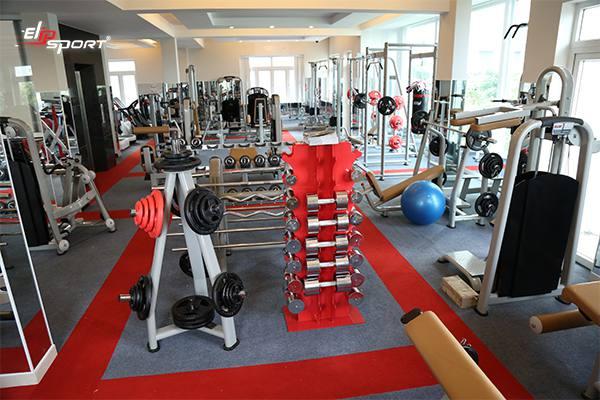 Dụng cụ thiết bị máy tập gym, thể hình tại Hậu Giang