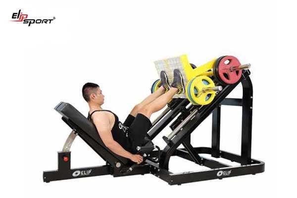 Dụng cụ máy tập gym, thể hình tại Bình Thuận