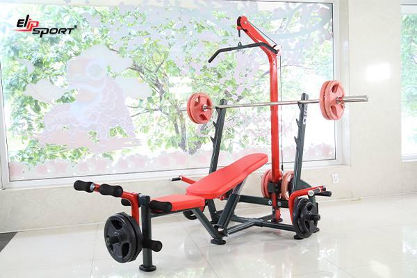 Dụng cụ máy tập gym, thể hình tại Ninh Thuận