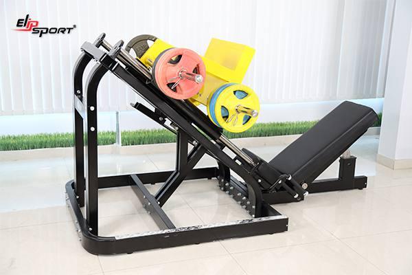 Nơi cung cấp dụng cụ máy tập gym, thể hình tại Đông Anh - Hà Nội