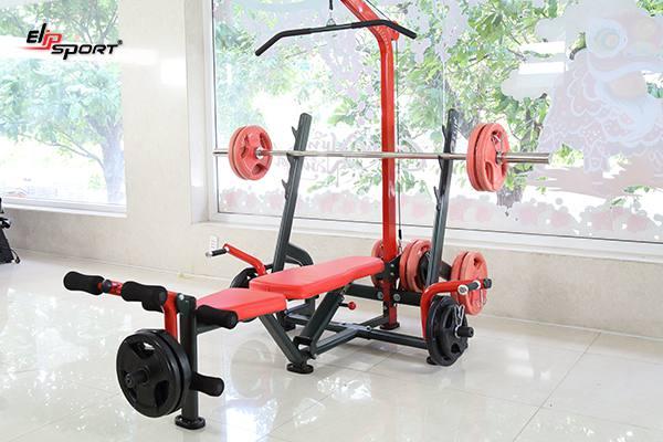 Dụng cụ máy tập gym, thể hình tại Hà Nội