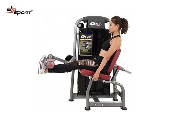 Elipsport chuyên cung cấp dụng cụ máy tập gym, thể hình tại Hà Giang