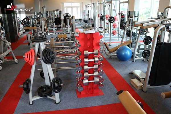Cửa hàng dụng cụ, thiết bị máy tập thể dục thể thao TP. Phủ Lý - Hà Nam