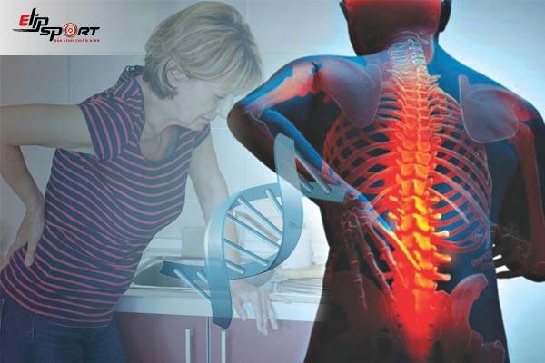 nguyên nhân đau vùng thắt lưng