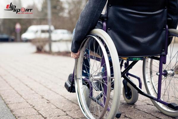 5 Bài Thuốc Trị Đau Khớp Gối Từ Những Loại Cây Quanh Nhà
