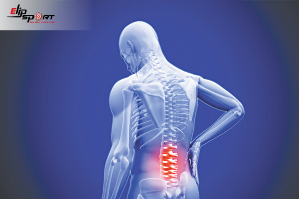 Đau Cột Sống Vùng Thắt Lưng Là Bệnh Gì?