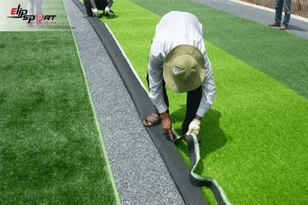 cỏ trồng sân bóng đá