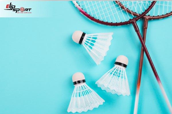 vợt cầu lông proace 318