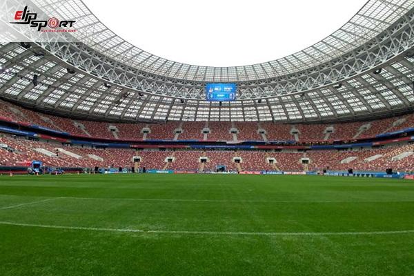 cỏ sân bóng đá quốc tế là cỏ gì