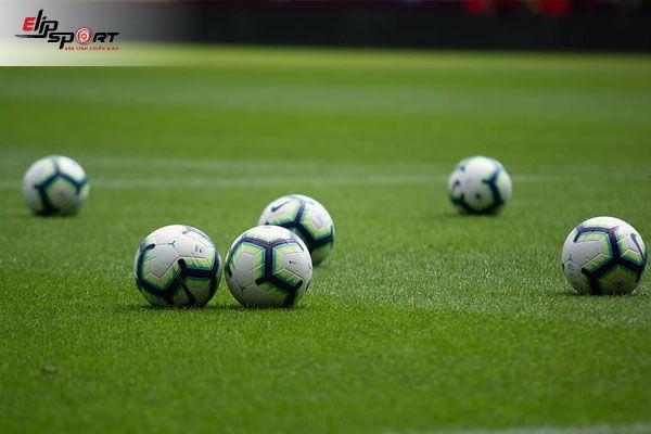 sân cỏ bóng đá là gì