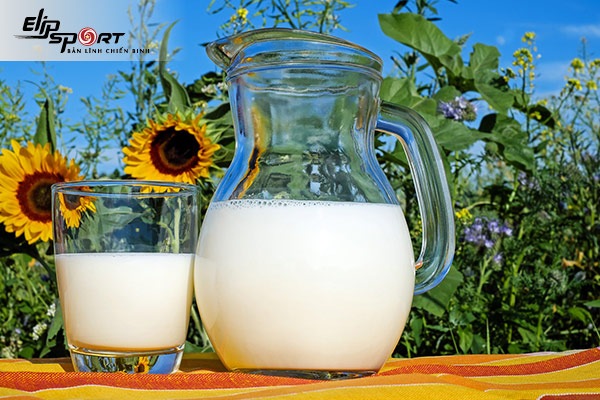 cách giảm cân với sữa tươi