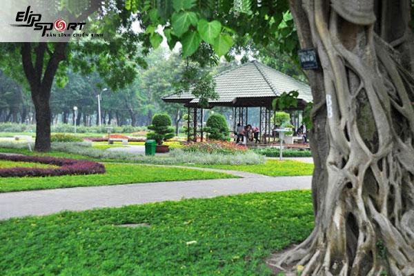 Chạy bộ ở Gò Vấp, Hồ Chí Minh