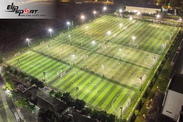 sân bóng Tân Phú