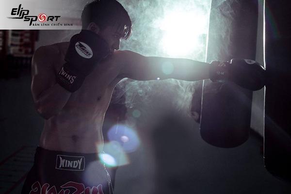 boxing Hà Nội