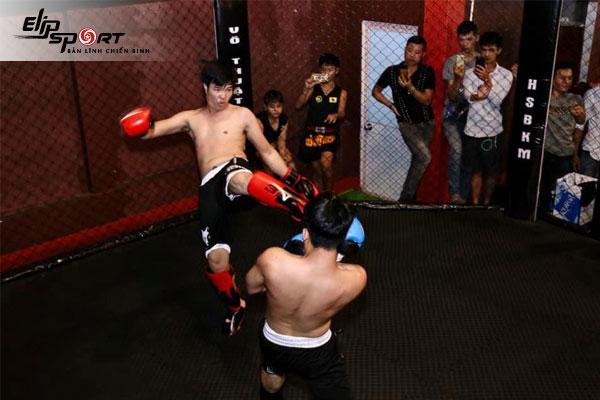boxing Gò Vấp, Hồ Chí Minh