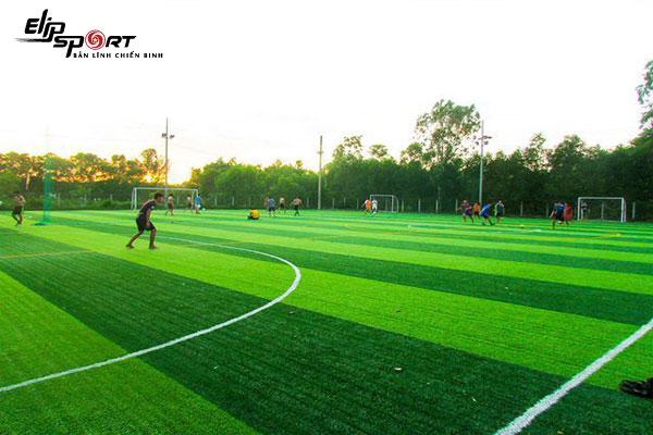 sân bóng đá quận 7, Hồ Chí Minh