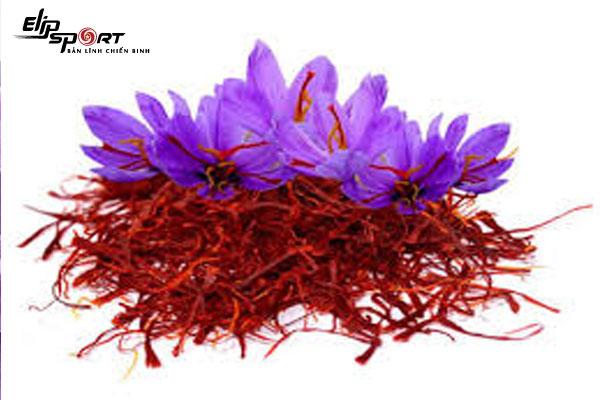 saffron có tốt không