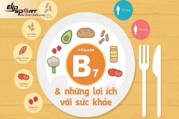 tác dụng của vitamin b