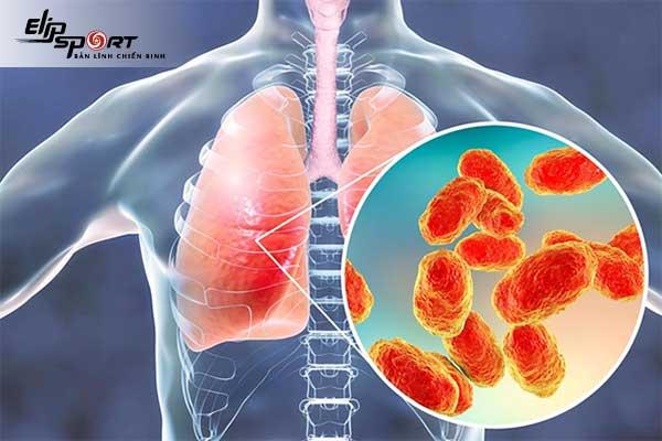 chức năng của phổi
