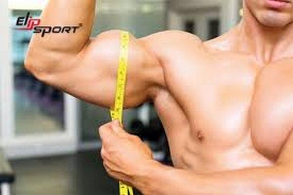 bí quyết tập tạ mau lên cơ