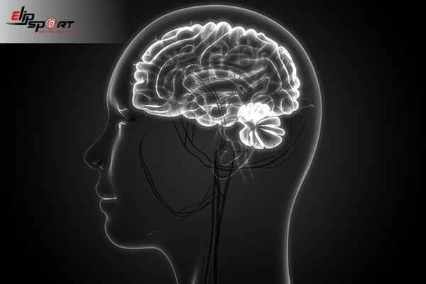 bệnh não trắng