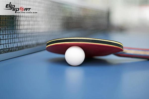 vợt bóng bàn xịn