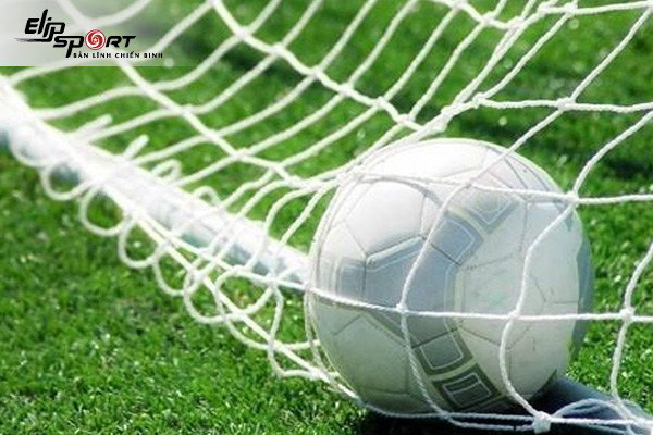 Các loại bóng đá