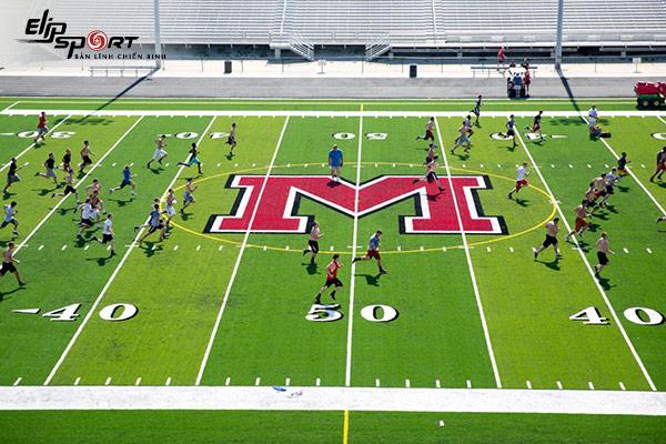 quản lý sân bóng đá cỏ nhân tạo