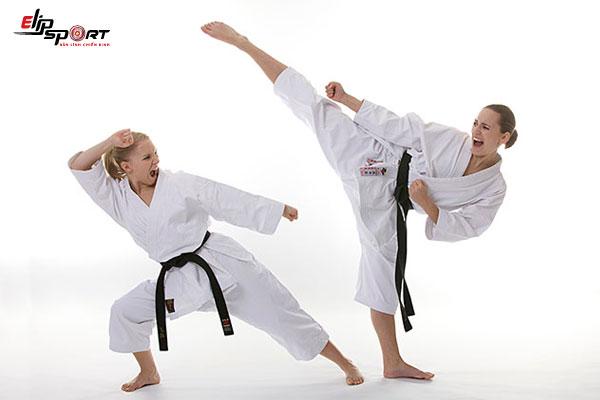 Võ karate có mấy đai