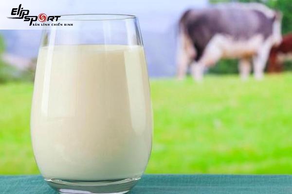 Danh sách sữa nào chứa nhiều canxi nhất