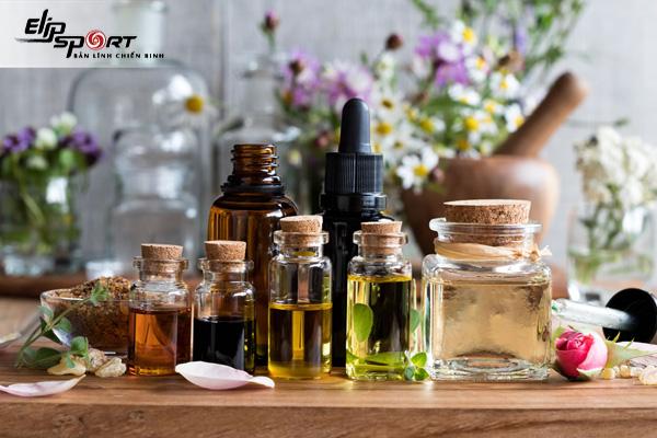 Tổng hợp các loại cây chứa tinh dầu và cách bảo quản chúng