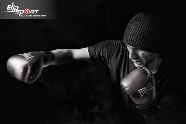 cách chọn găng tay boxing