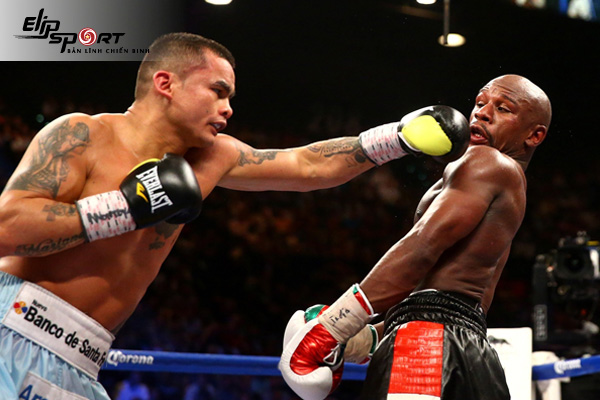 Giới thiệu các đòn đấm trong boxing