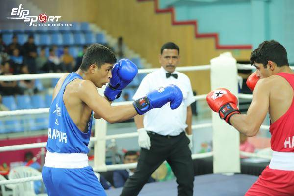 Luật boxing