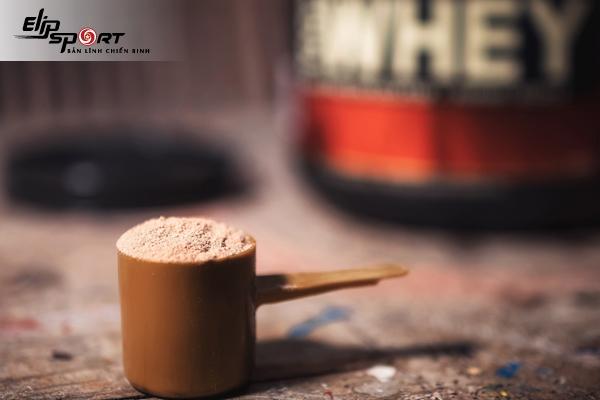 bột whey là gì